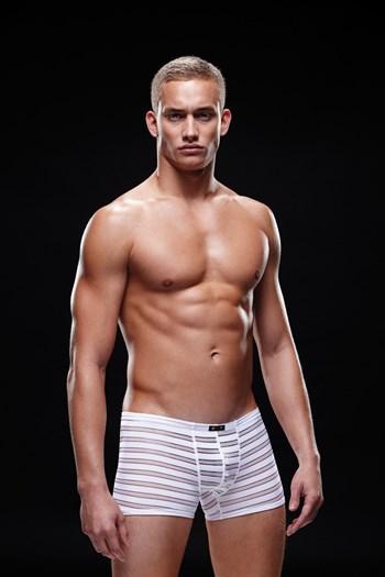 Witte boxer met doorzichtige strepen