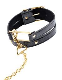 FF Gold halsband met ketting