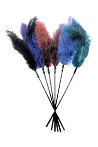 Struisvogelveren kietelaar (diverse)
